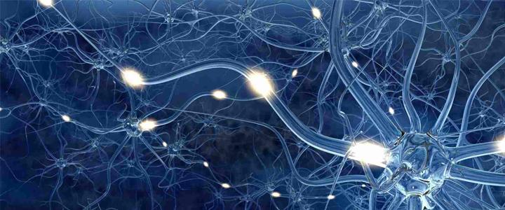 neurofisiologia-clinica-marazuela